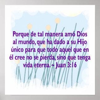 Juan 3:16 poster
