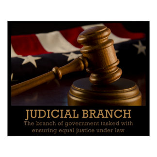Judicial Branch Poster