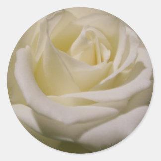Judi's Rose Classic Round Sticker
