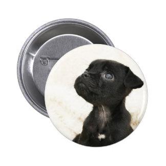 jug pup badge pins