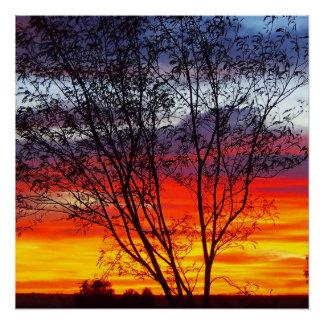 Julia Creek sunset silhouette poster