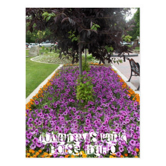 Julia Davis Park in Boise, Idaho Postcard