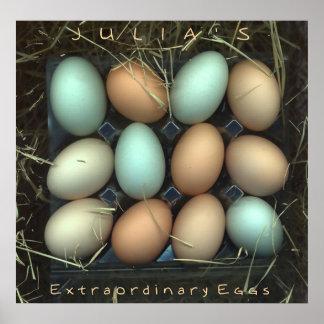 Julia's Extraordinary Eggs Poster