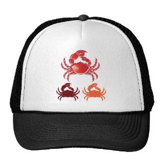 Jumbo Crab vector Cap