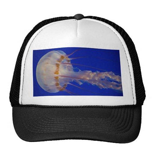 Jumbo Jellyfish Trucker Hat
