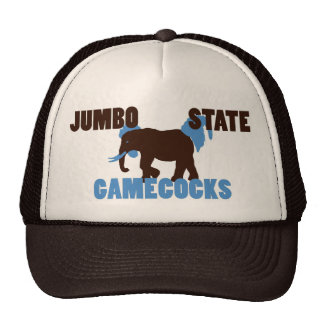 Jumbo State Gamecocks Hat