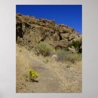 Jump Creek Canyon Posters