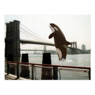Jumping the Brooklyn Bridge Postcard