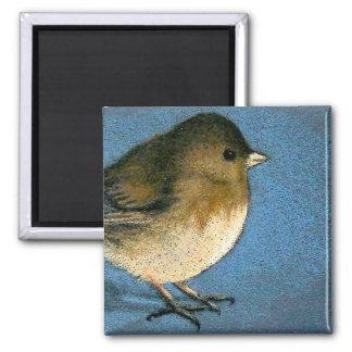 JUNCO BIRD DRAWING MAGNET