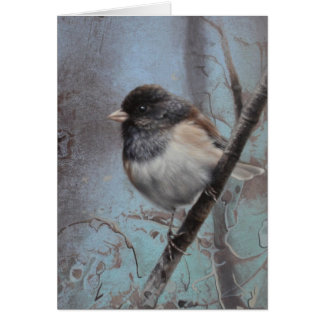 Junco Blank Card by Andrew Denman