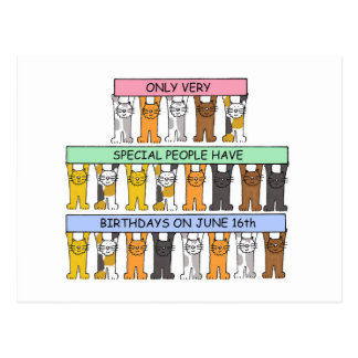 June 16th Birthday Cats Postcard