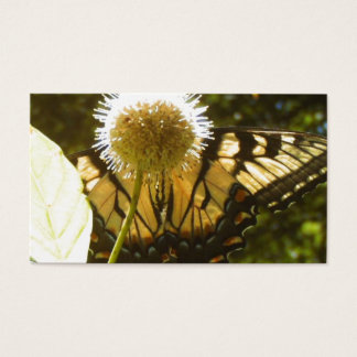 June Monarch Business Card