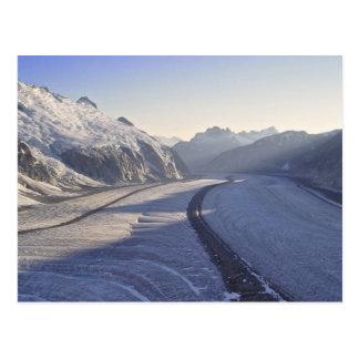 Juneau Icefield Postcard
