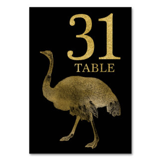 Jungle African Animal Ostrich Table Number Card 31