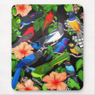 Jungle Birds of Mexico Mouse Pad