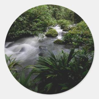 Jungle Stream River Landscape Amazon Round Sticker