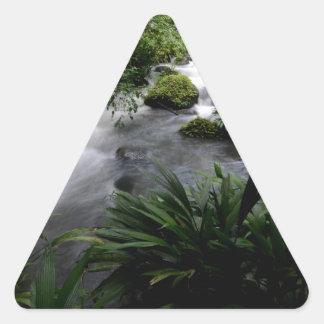 Jungle Stream River Landscape Amazon Triangle Sticker