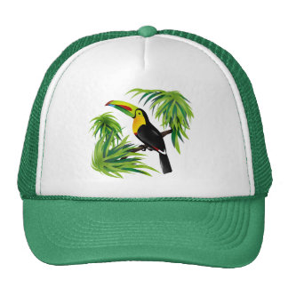 Jungle Toucan Cap