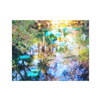 Juniper Springs Stretched Canvas Print