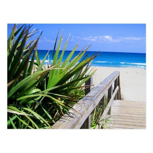 Juno Beach Florida Postcard