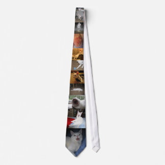 Jupey Tie
