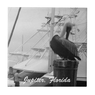 Jupiter, Florida Marina & Pelican Photo Tile