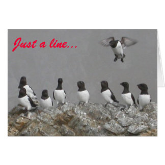 'Just a Line' Birds Blank Note Card