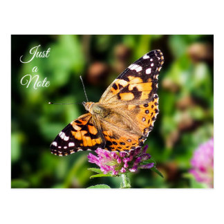 Just a Note Painted Lady Butterfly Postcard