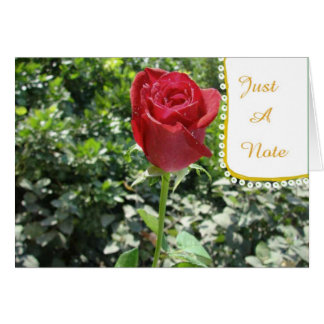 Just-A-Note Red Rose Bud Blank Card