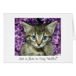 "Just a Note to Say ""Hello!"" Gray Kitten Card"