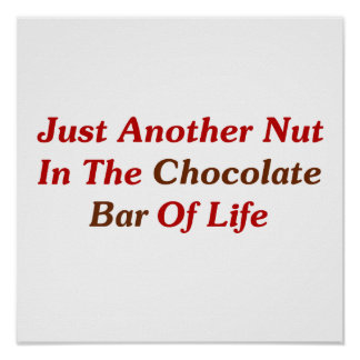 Just Another Nut In The Chocolate Bar Of Life Poster