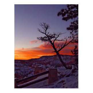 Just Before Sunrise At Bryce Canyon National Park Postcard