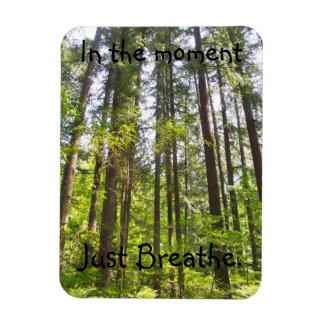 Just breathe tree magnet