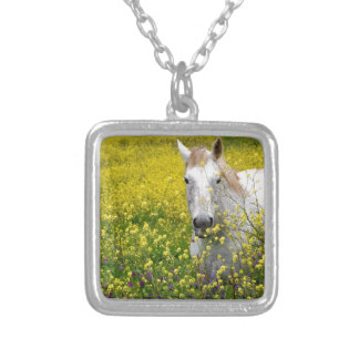 Just Curious Silver Plated Necklace