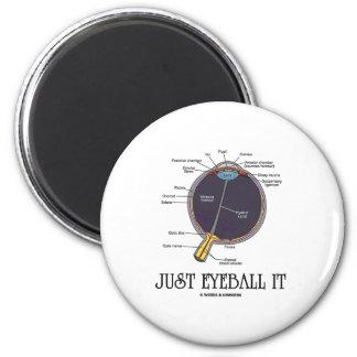 Just Eyeball It (Eye Anatomy Approximation Saying) Refrigerator Magnets