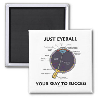 Just Eyeball Your Way To Success (Eye Anatomy) Square Magnet