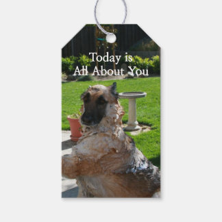 Just For You German Shepherd Gift Tag
