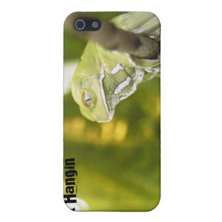 Just Hangin' Frog themed Cover For iPhone 5/5S
