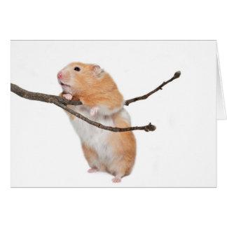 just hanging around card