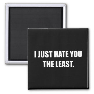 Just Hate You The Least Funny Magnet