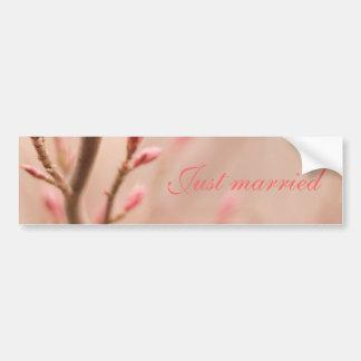 Just married spring dreams bumper sticker