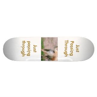 just passing through custom skate board