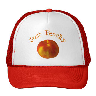 Just Peachy Mesh Hat