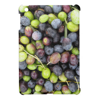 Just picked olives background during harvest time iPad mini cover