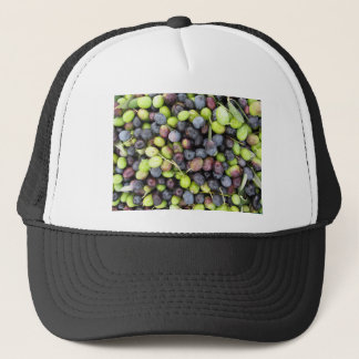 Just picked olives background during harvest time trucker hat