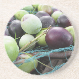Just picked olives on the net during harvest time coasters