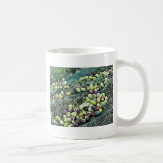 Just picked olives on the net during harvest time coffee mug