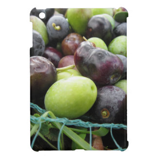 Just picked olives on the net during harvest time iPad mini cover
