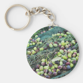 Just picked olives on the net during harvest time key ring