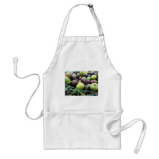 Just picked olives on the net during harvest time standard apron